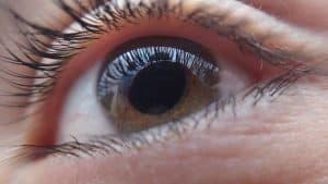 עיוורון ראשית